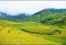 vấn-đề-về-đền-bù-đất-nông-nghiệp
