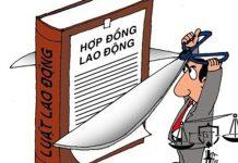nguoi-su-dung-lao-dong-cham-dut-hop-dong-lao-dong