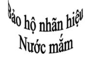 bao-ho-nhan-hieu-cho-nuoc-mam