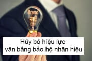 Huy Bo Hieu Luc Van Bang Bao Ho Nhan Hieu