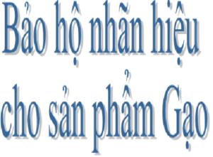 bao-ho-nhan-hieu-cho-san-pham-gao