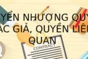 Cach Thuc Chuyen Nhuong Quyen Tac Gia Quyen Lien Quan