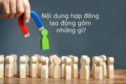 Noi Dung Hop Dong Lao Dong Gom Nhung Gi