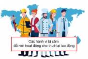 Cac Hanh Vi Bi Cam Doi Voi Hoat Dong Cho Thue Lai Lao Dong