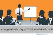 Hoi Dong Thanh Vien Cong Ty Tnhh 2 Thanh Vien Tro Len