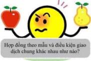Hop Dong Theo Mau Va Dieu Kien Giao Dich Chung