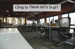 Công ty TNHH một thành viên là gì? Đặc điểm và định nghĩa