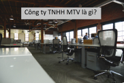 Cong Ty TNHH MTV
