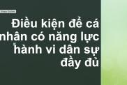 Dieu Kien Co Nang Luc Hanh Vi Dan Su Day Du