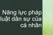 Nang Luc Phap Luat Dan Su