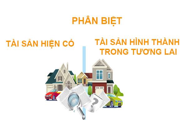 Phan Biet Tai San Hien Co Va Tai San Hinh Thanh Trong Tuong Lai