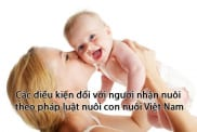 Cac Dieu Kien Nuoi Con Nuoi Theo Phap Luat Viet Nam
