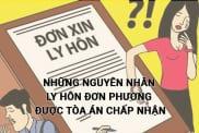 Nhung Nguyen Nhan Ly Hon Don Phuong Duoc Toa An Chap Nhan